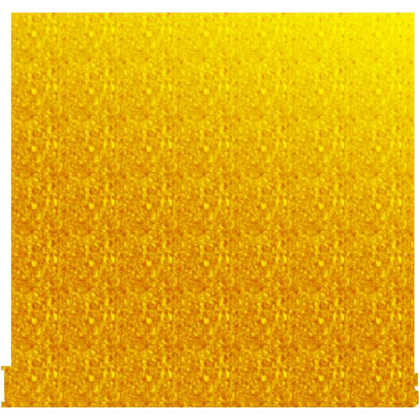 Kingston Cats